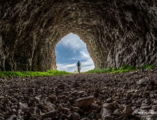 Fuori dal tunnel: cosa è cambiato nelle aziende: lavoro, relazioni, reputazione