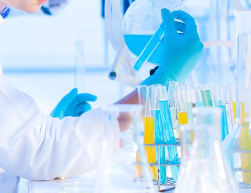 Parità di genere nelle discipline STEM (e non solo): quale futuro?