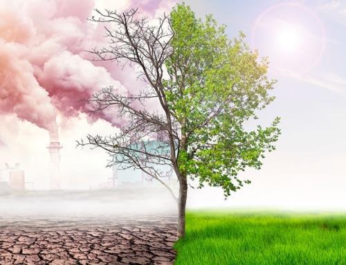L'ecologia umana è l'unico strumento per salvare il pianeta